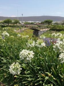 El Refugio Green Spaces